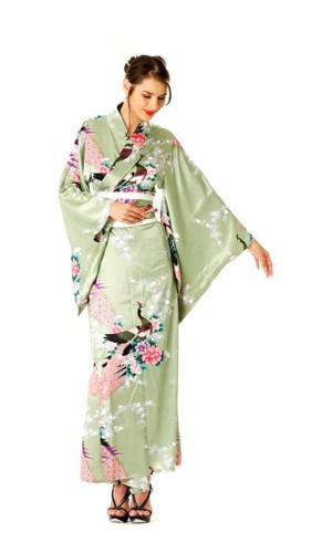 Grønn Kimono Kjole Kimono Kjoler